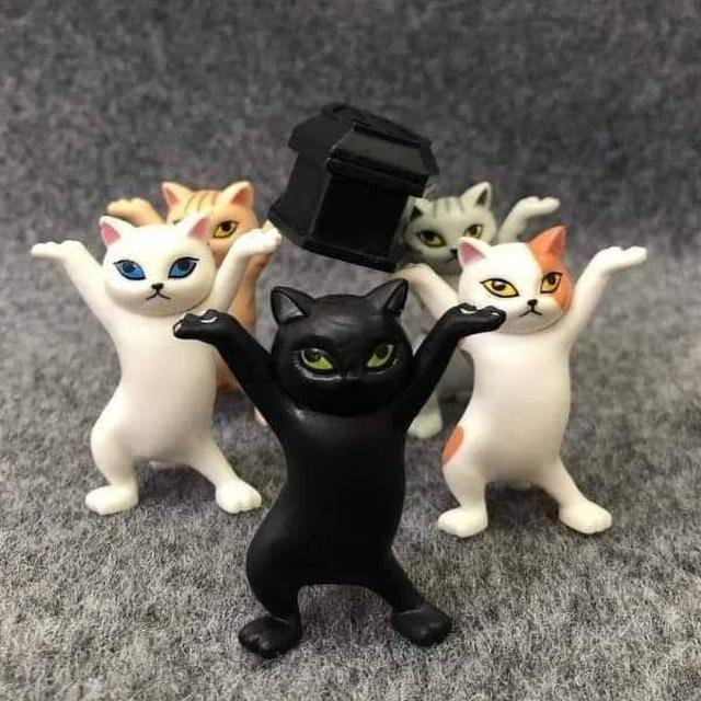 抬棺舞造型貓咪~5隻