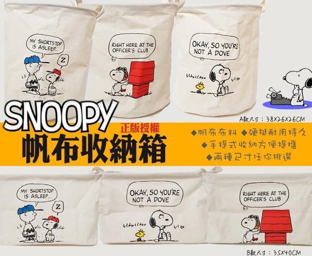 Snoopy正版授權耐用耐看帆布收納袋🌈預購