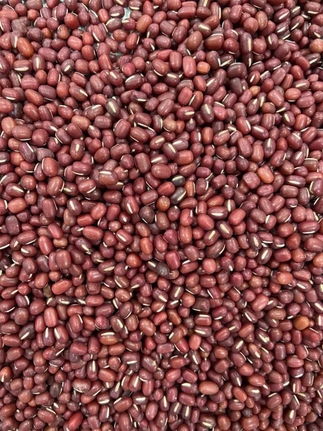 《南國の紅豆 大自然的餽贈》2021年 屏東萬丹 特選紅豆 600g