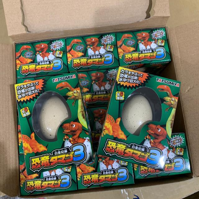 「現貨」日本恐龍蛋 孵化 玩具 小朋友的最愛