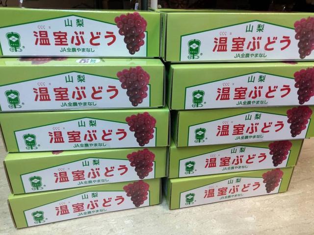 日本山梨縣珍珠葡萄