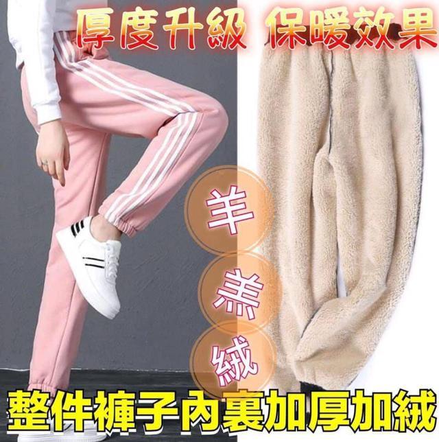 羊羔毛加絨加厚保暖北極絨三槓運動褲