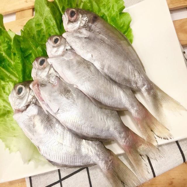 冷凍肉魚 8尾約900公克一袋