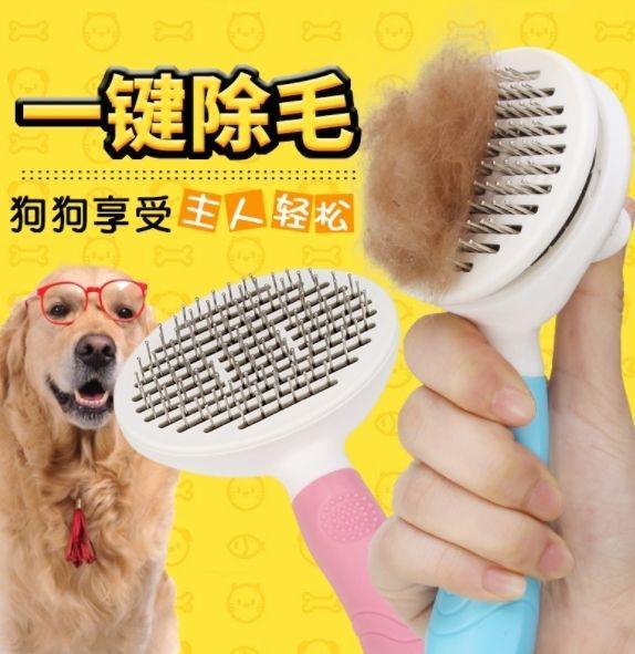 預購商品 11/17 結單  一鍵除毛 寵物除毛梳