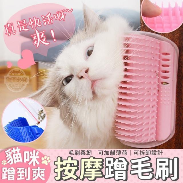 (O)預購 貓咪蹭到爽按摩蹭毛刷 一組4個