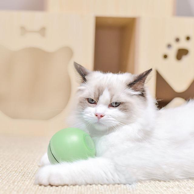 貓玩具電動逗貓球自動智能球小貓玩具自嗨可充電網紅抖音貓咪用品