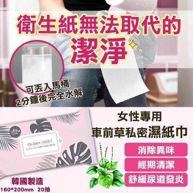 現貨🌺韓國女性專用車前草私密濕紙巾
