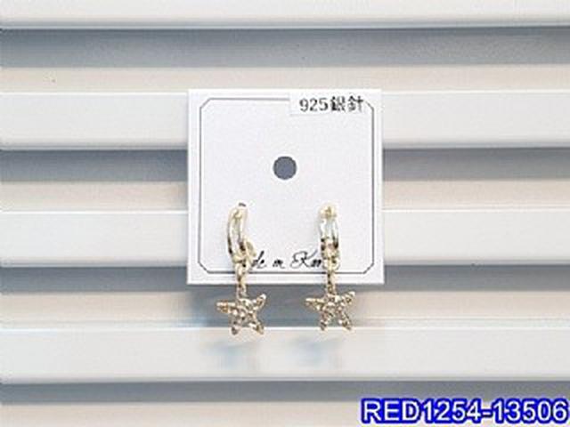 正韓S925純銀 閃鑽海星弧形耳環   耳針 韓式