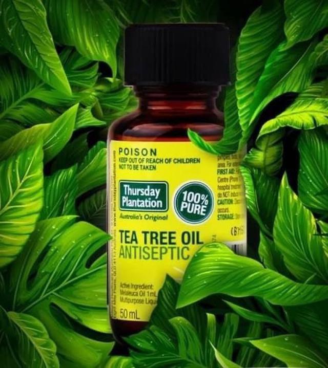 現貨 澳洲 星期四農莊100%純天然茶樹精油