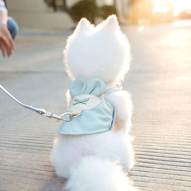 寵物胸背帶牽繩