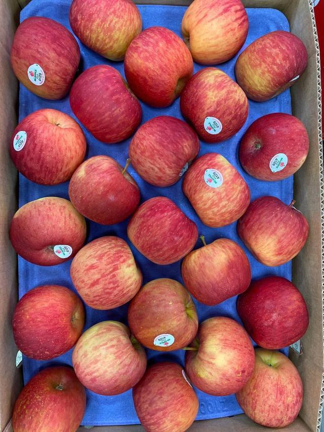 紐西蘭蘋果🍎