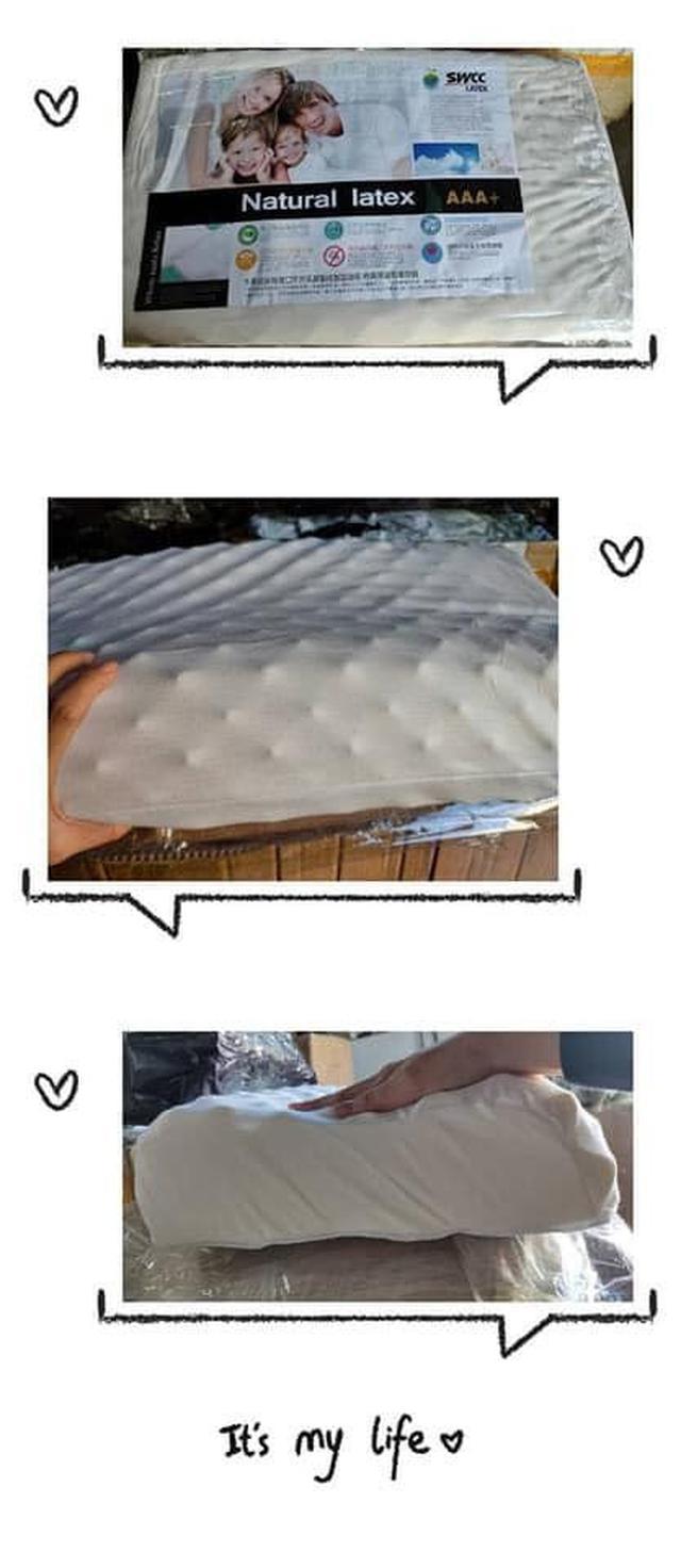 天然防螨抗菌人體工學乳膠枕
