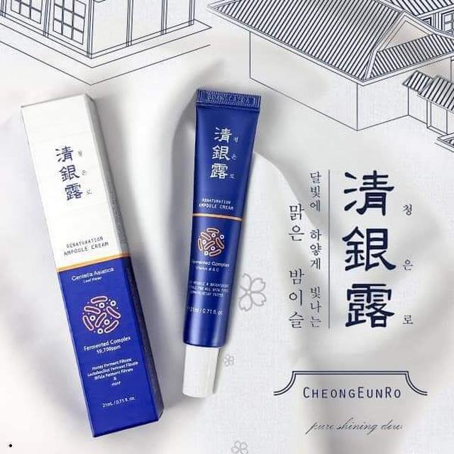 預購 韓國新品 百年宮廷秘方 清銀露 酵母提亮霜 21ml