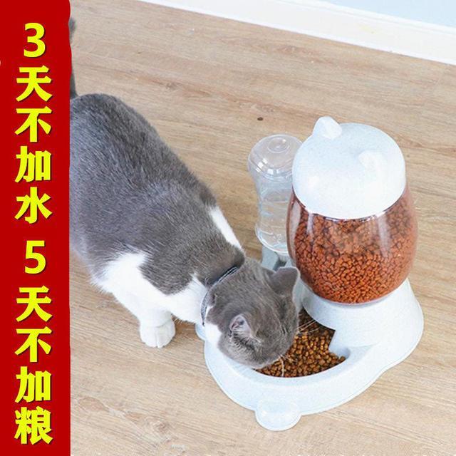 貓咪餵食器自動飲水機貓食碗寵物飲水器不濕嘴雙碗狗盆狗碗防打翻