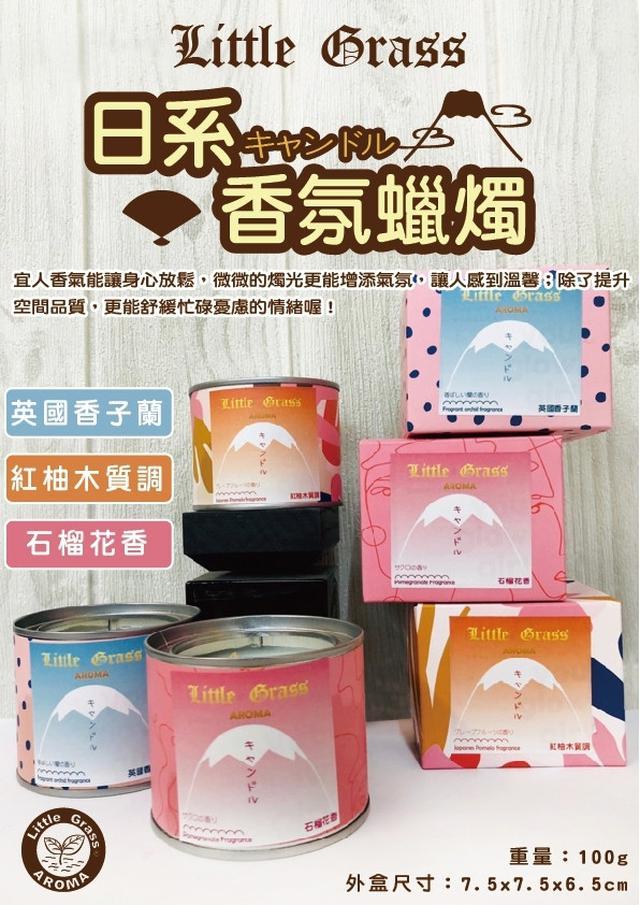 【香氛蠟燭】Little Grass 日系香氛蠟燭 油漆罐蠟燭