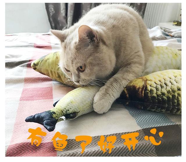 貓玩具魚貓薄荷魚逗貓棒磨牙玩具寵物毛絨仿真抱枕貓咪