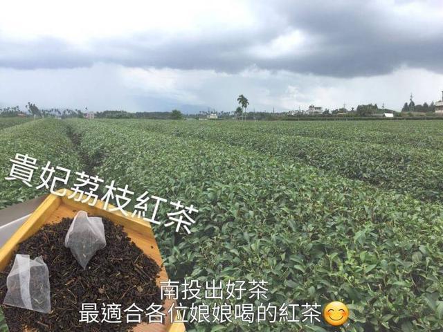 🇹🇼台灣 「貴妃荔枝紅茶」🥃