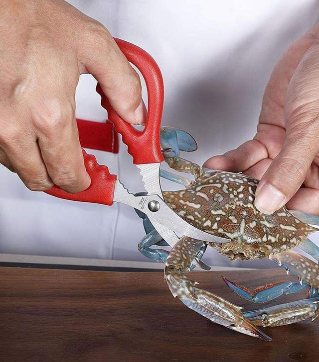 (預購S) 弧形設計蝦蟹剪刀