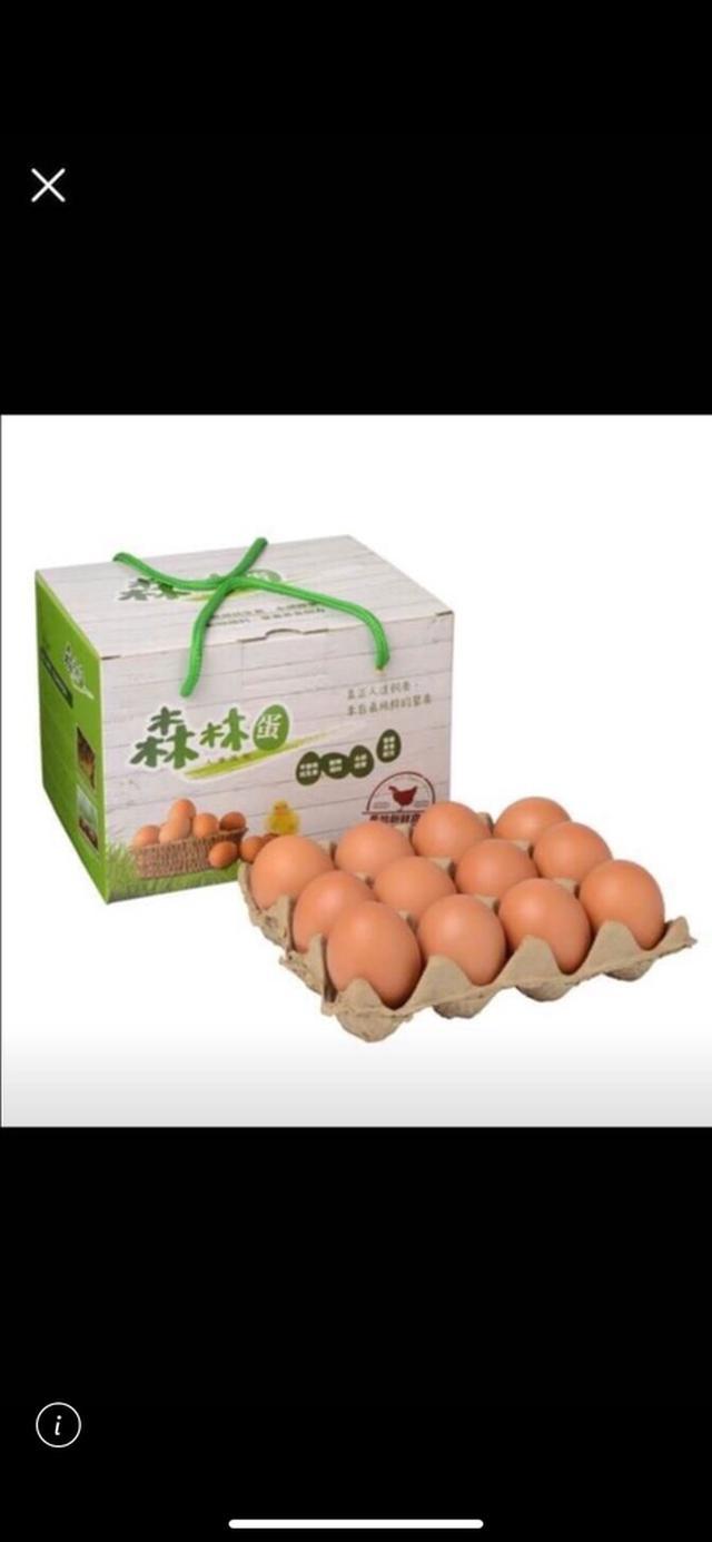 森林蛋(24入)