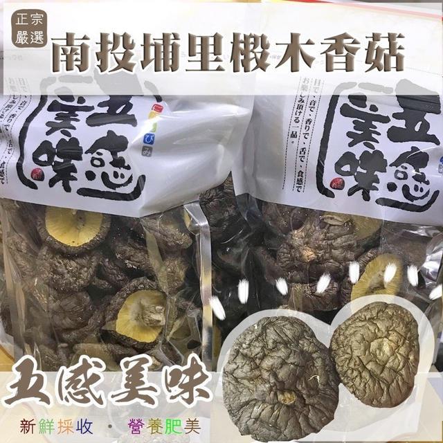 IOT批發【⭐️正宗嚴選南投埔里椴木香菇 100g】