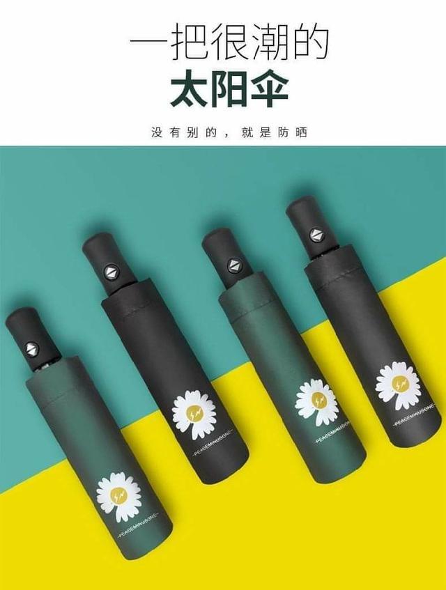 全自動小雛菊折疊黑膠傘