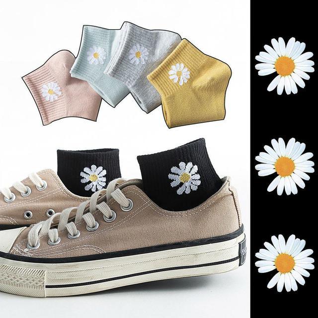 韓國小雛菊中低款淺口襪10雙袋裝