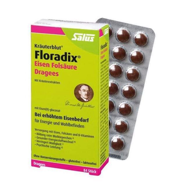 Floradix Tablets德國鐵元片84粒