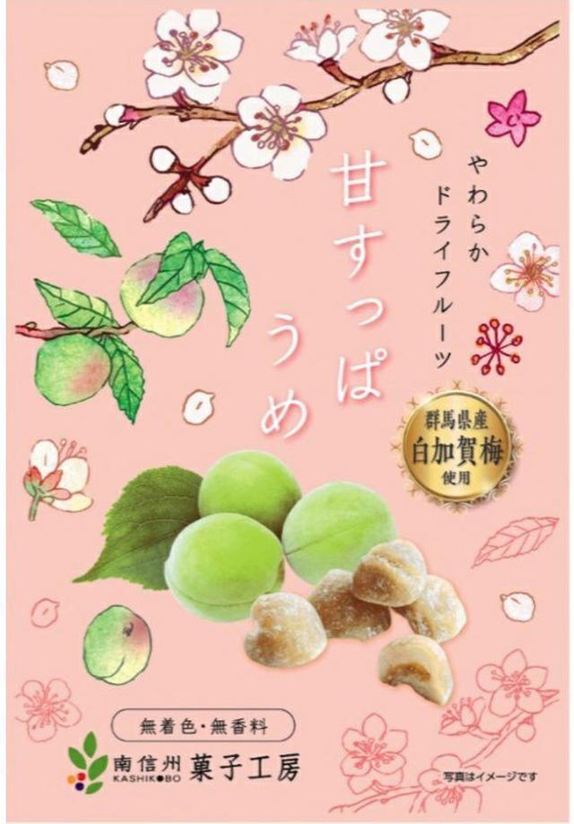 日本南信州菓子工坊水果乾系列