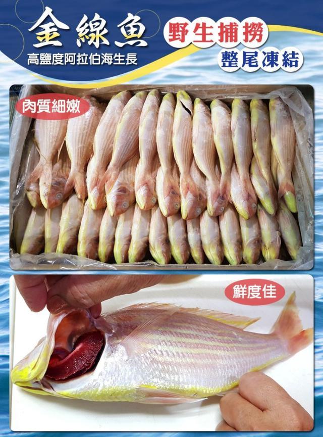 野生捕撈金線魚(整尾無處理)-200G~300G/尾