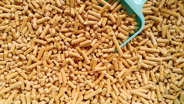 松木沙 5公斤/10公斤