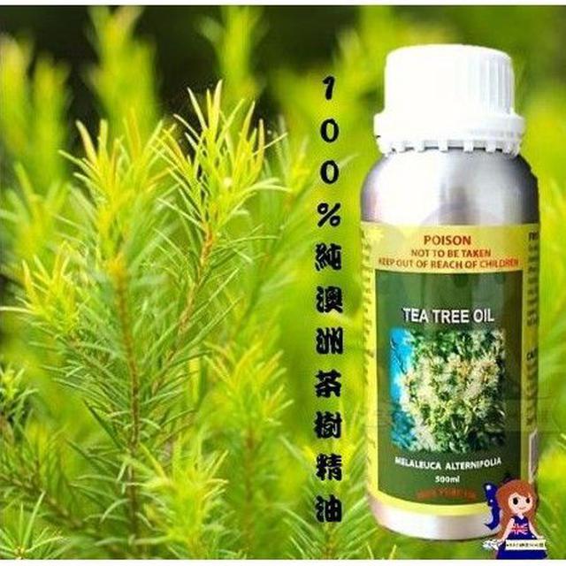 澳洲茶樹100%純精油 500ml