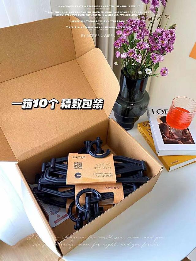 折疊衣架 一盒10支裝