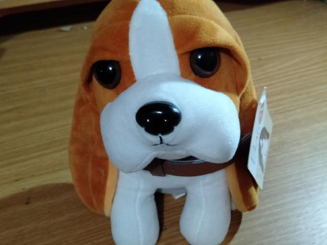【可愛寵物狗🐶娃娃】【有吊牌】