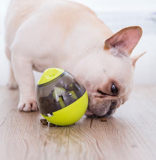 寵物益智玩具 漏食球