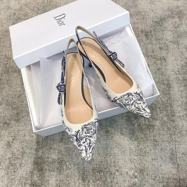 Dior刺绣精品鞋