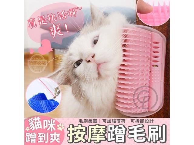 #預購C/91-72/超舒適貓咪蹭到爽按摩蹭毛刷
