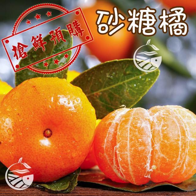 砂糖橘/預購-12月底開始出貨
