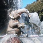 象米象 零售群